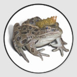 Frog Prince Round Stickers
