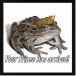"""Frog Prince - """"Your Prince Has Arrived!"""""""