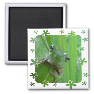 Frog Products Square Magnet