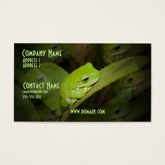 Frog Reflections Business Card