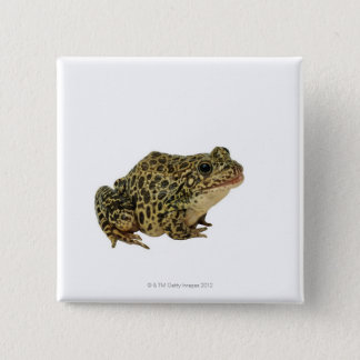 Frog shadow 15 cm square badge
