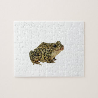 Frog shadow jigsaw puzzle