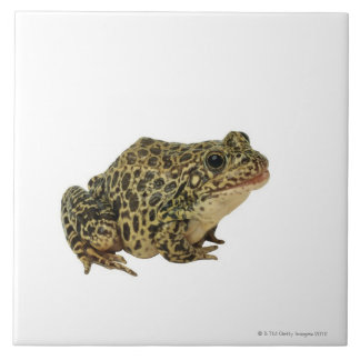 Frog shadow tile
