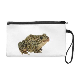 Frog shadow wristlet