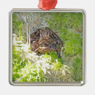 Frog Silver-Colored Square Decoration