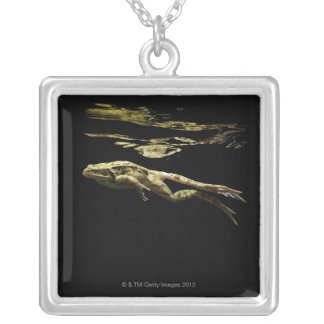 frog swimming in the dark just below the surface silver plated necklace