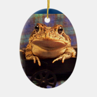 Frog Toad in black wagon with plaid background Christmas Tree Ornaments