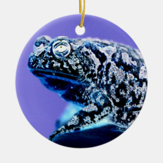 Frog toad  photo inverted blue black christmas tree ornament