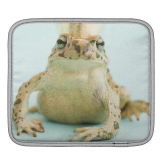 Frog wearing crown iPad sleeve