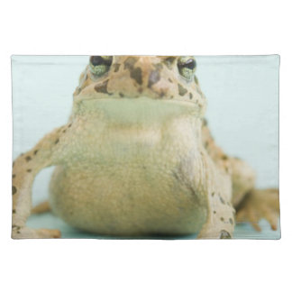 Frog wearing crown placemat