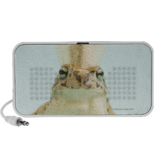 Frog wearing crown mini speakers