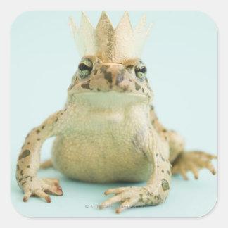 Frog wearing crown sticker