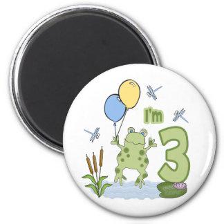 Froggy 3rd Birthday Fridge Magnet