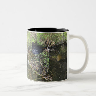 Frogs and Frog Spawn in a Pond Mug