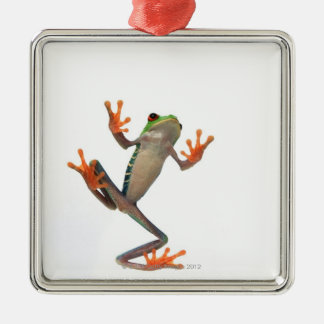 Frogs belly christmas tree ornaments