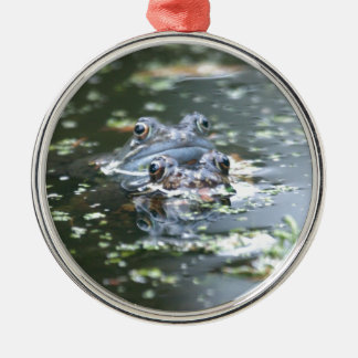 Frogs Christmas Ornament