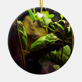 Frogs in a Tree Christmas Ornament