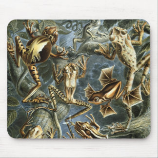 Frogs Mouse Mat