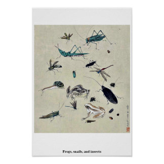Frogs, snails, and insects poster