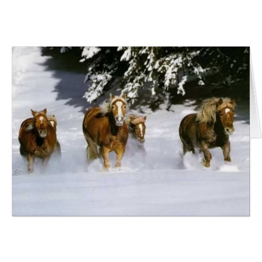From Our Herd To Yours Photo Greeting Card