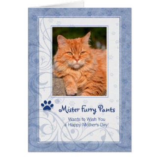 from the Cat Mother's Day in Periwinkle Blue Photo Greeting Card