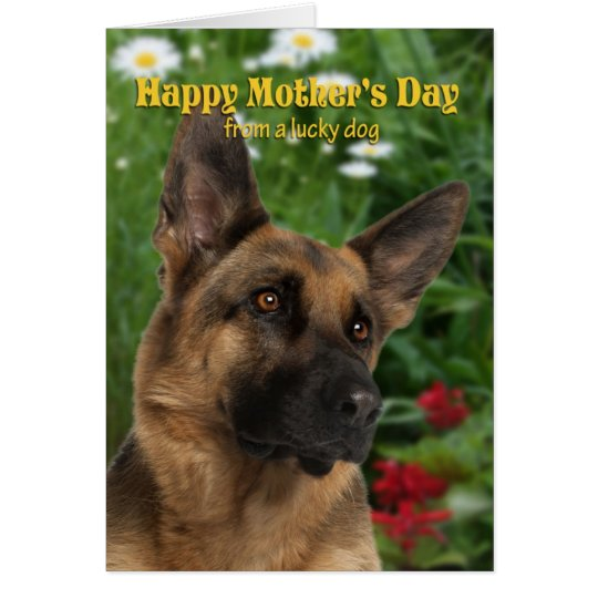 From the German Shepherd Mother's Day Card