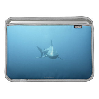 Front view of a Tiger Shark MacBook Sleeve