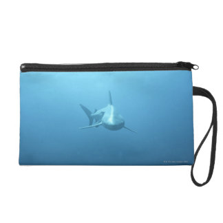Front view of a Tiger Shark Wristlet