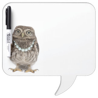 Front view of a Young Little Owl Dry Erase Board