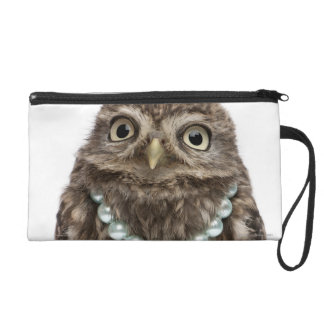 Front view of a Young Little Owl Wristlet