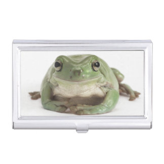 Front View Studio shot of a Smiling, Whites Tree Business Card Holder
