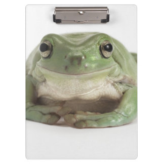 Front View Studio shot of a Smiling, Whites Tree Clipboard