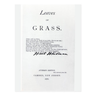 Frontispiece to 'Leaves of Grass' Postcard