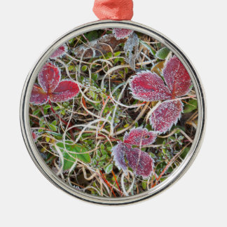 Frost covered leaves, Canada Christmas Ornament