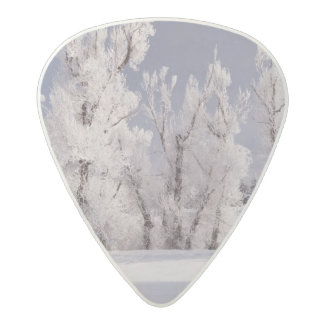 Frost Covered Trees and Fence, Colorado Acetal Guitar Pick