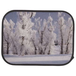 Frost Covered Trees and Fence, Colorado Car Mat