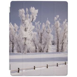 Frost Covered Trees and Fence, Colorado iPad Cover