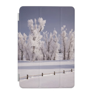Frost Covered Trees and Fence, Colorado iPad Mini Cover