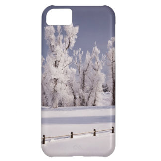 Frost Covered Trees and Fence, Colorado iPhone 5C Case