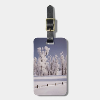 Frost Covered Trees and Fence, Colorado Luggage Tag