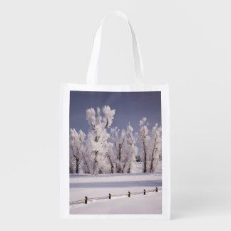 Frost Covered Trees and Fence, Colorado Reusable Grocery Bag