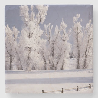 Frost Covered Trees and Fence, Colorado Stone Coaster