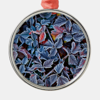 Frost on autumn leaves, Oregon Christmas Ornament