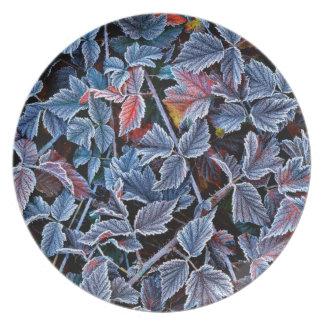 Frost on autumn leaves, Oregon Dinner Plates