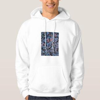 Frost on autumn leaves, Oregon Hoodie