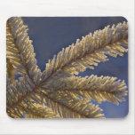 Frost on evergreen tree, Homer, Alaska Mouse Mat