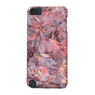 Frost on fallen leaves, Fall colors, Mill Creek iPod Touch (5th Generation) Cover