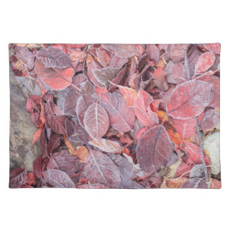 Frost on fallen leaves, Fall colors, Mill Creek Placemat