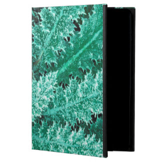 Frost On Thistle, Olympic National Park iPad Air Covers