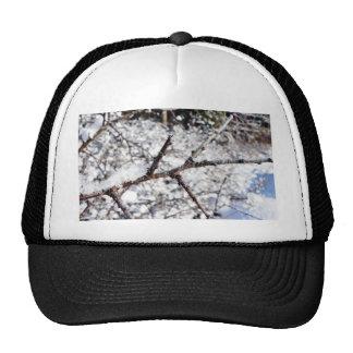 Frost On Tree Twig Trucker Hat